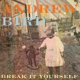 andrew-bird-break-yourself_jpg_630x630_q85